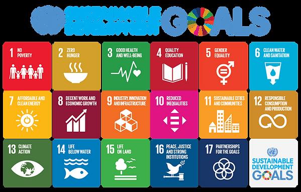 Objetivos de Desarrollo Sostenible - Ética NewPa Inmersiones