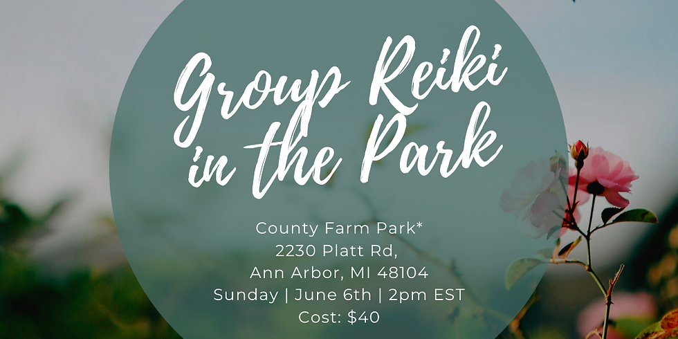 Group Reiki in the Park!