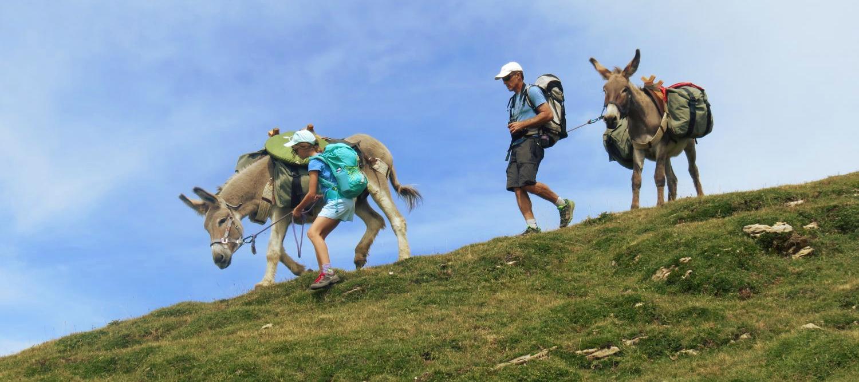 Rando anes sherpas