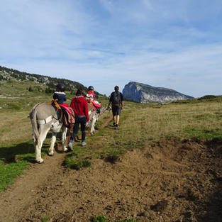 Exploration des hauts plateaux