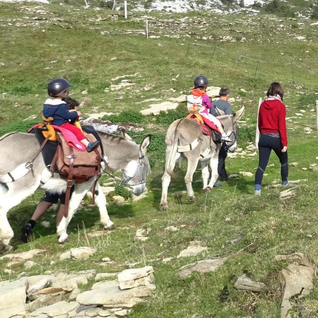 Randonnée montagne à dos d'âne