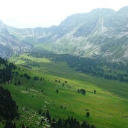 Réserve naturelle des Hauts Plateaux