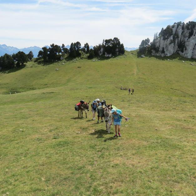 Nos ânes sherpas qui portent les sacs