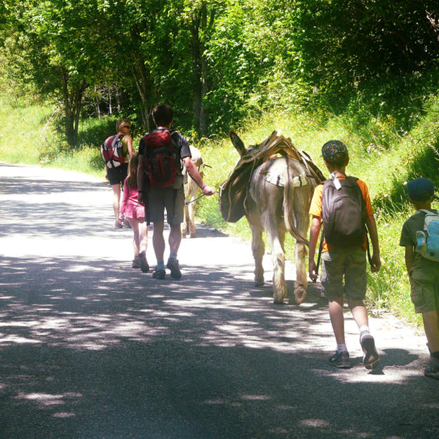 Randonnée Saint Hilaire avec les ânes