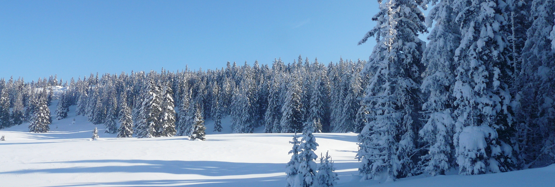 Vercors dans la neige