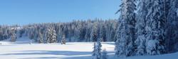 Hauts plateaux de Vercors neige