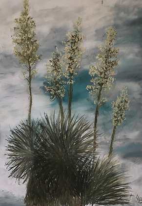 Yucca's in the Sky