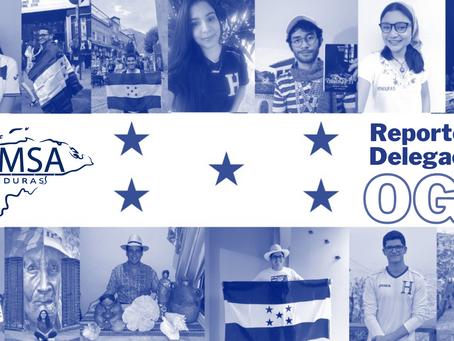 Reporte Delegación OGA (AM 2020)