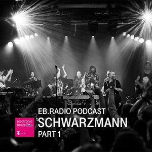 Electronic Beats Radio Podcast SCHWARZMANN SOIREE Part One