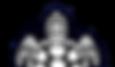Turtle River Services Logo