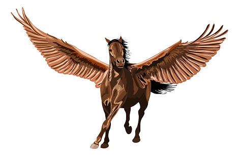 Pegasus - Brown.jpg