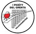 logo-picett-30°.jpg