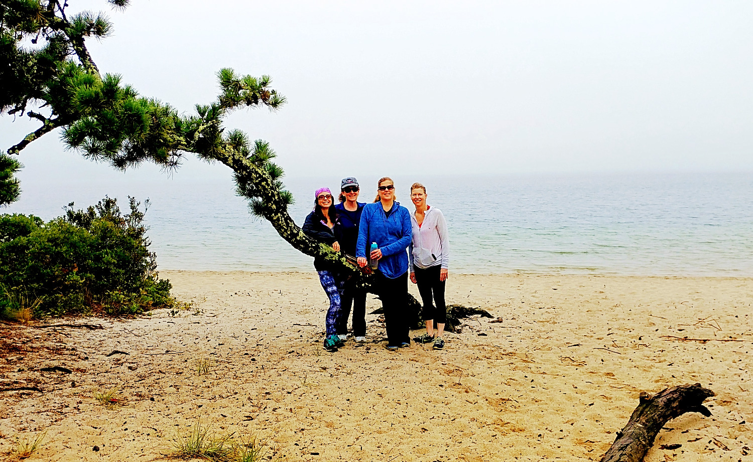 Hiking - Cape Cod Yoga Retreat