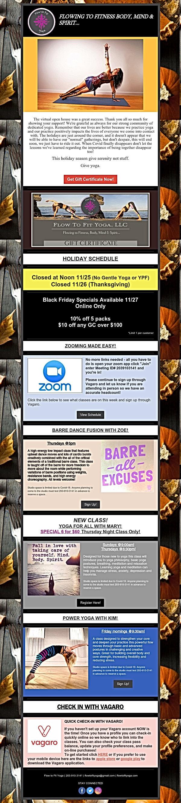 November Newsletter 2020.jpg