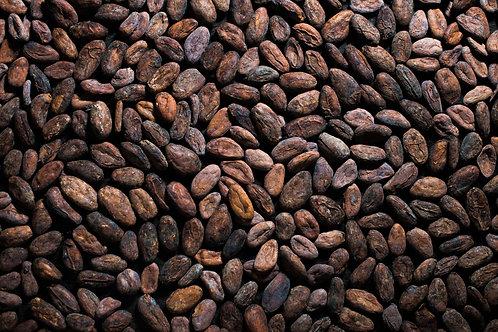 Granos de Cacao sin tostar