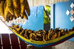 bananos_web