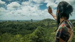 Tikal MayaCosmos