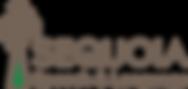 Sequoia Logo transparent.png