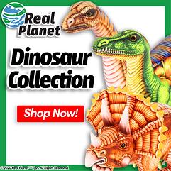 Dino-Home-ALT2.png