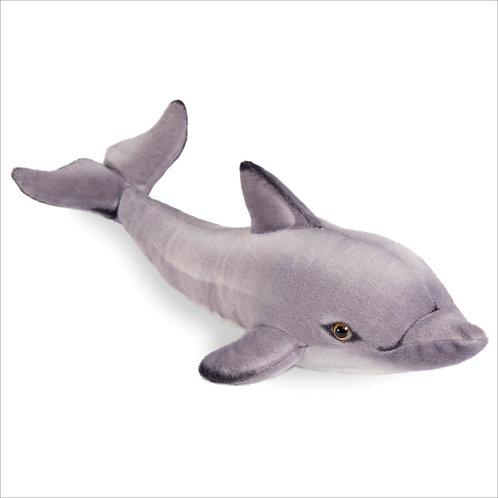 Dolphin-Gray