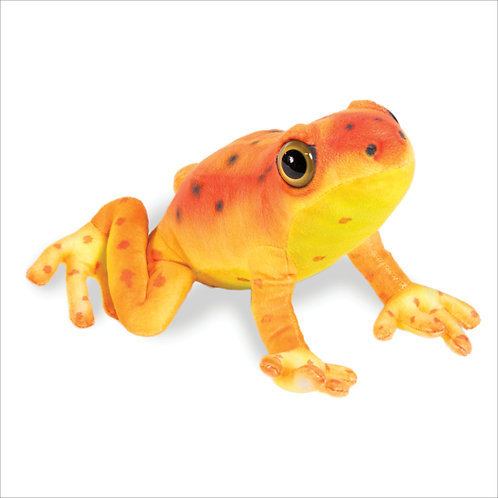 Arrow Poison Frog-Red
