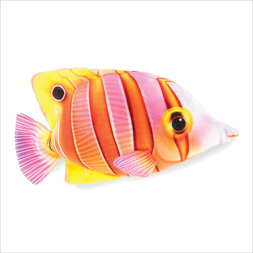 Butterfly Fish-Orange