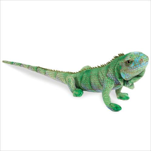 Iguana-Blue