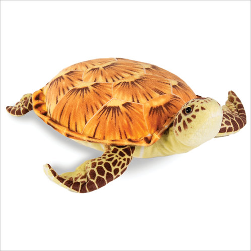 Sea Turtle-Brown
