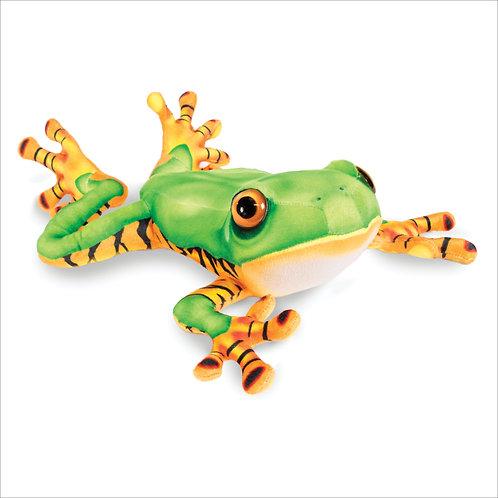 Tiger Legged Tree Frog