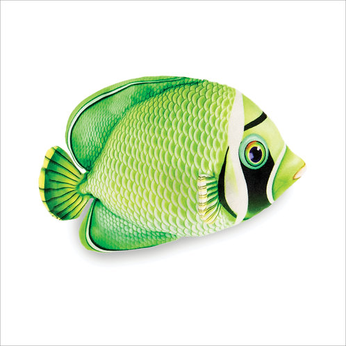 Butterfly Fish-Green