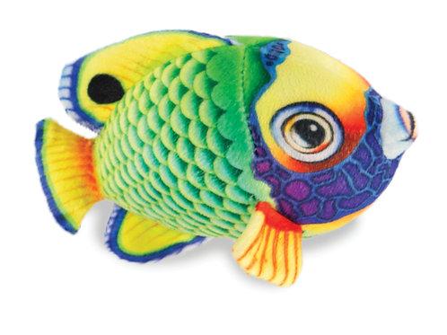 Angel Fish-Green