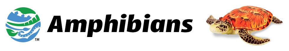 Collection-Banner-AmphibiNA.jpg