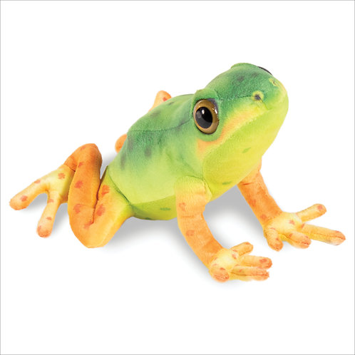 Arrow Poison Frog-Green