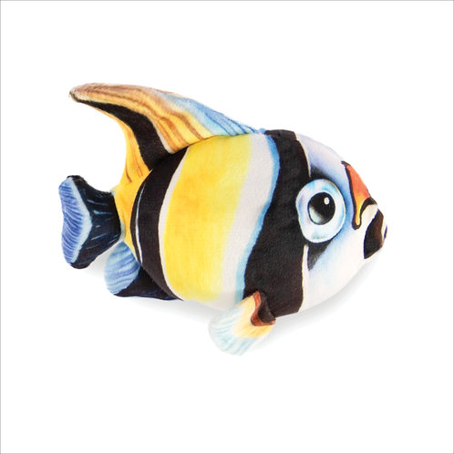 Angel Fish-White