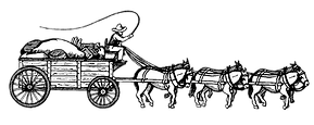stagecoachtransp.png
