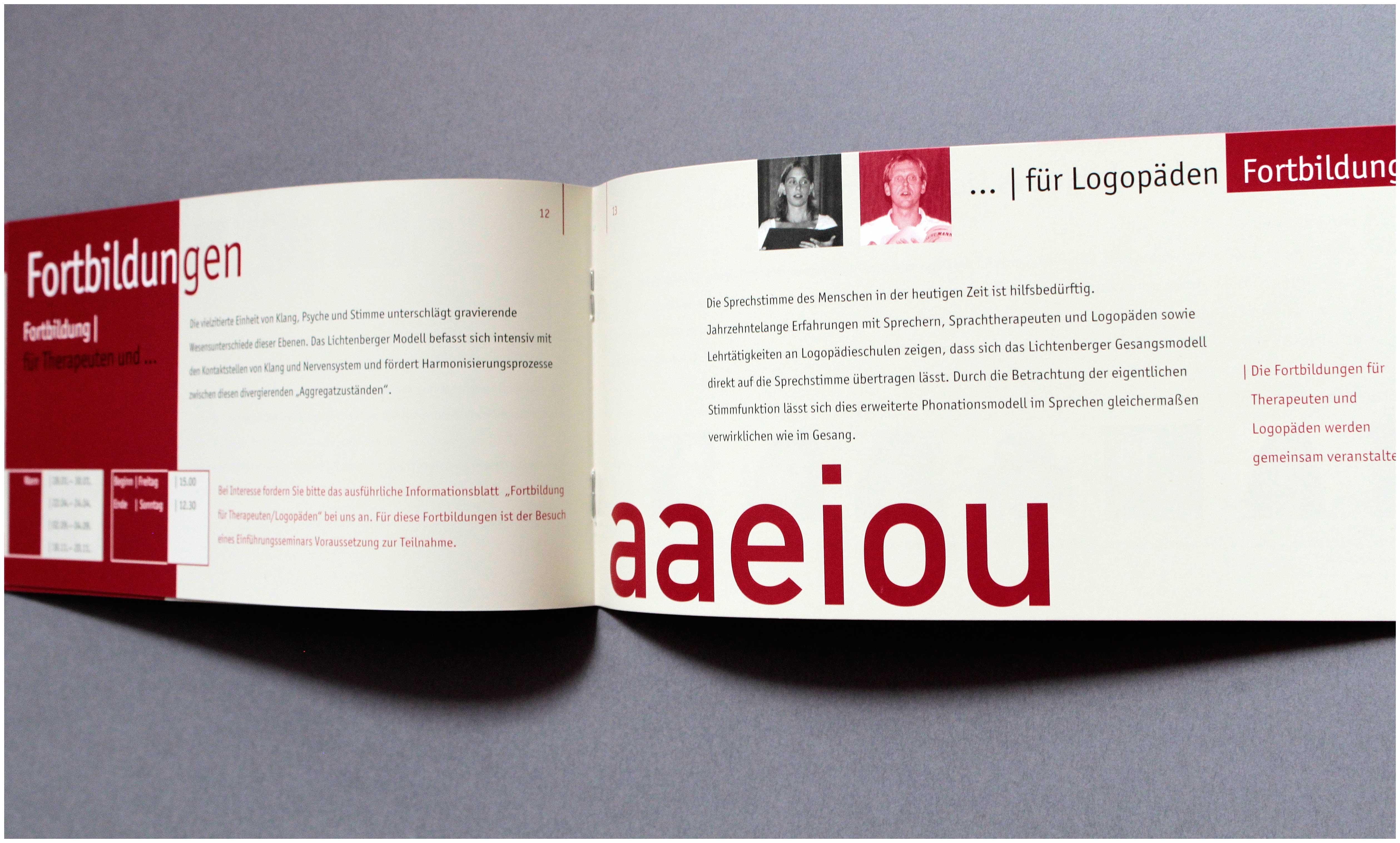 Broschüre-für-Lichtenberger-Institut