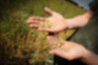 Copy of Copy of Hands.jpg