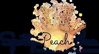 SpottyPeach Inc. _basic-file.png
