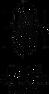 Logo_NCF_ENG_new_final_RGB-01 (2).png