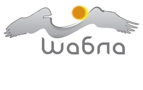 проект: лого / логотип клиент: Община Шабла - туризъм година: 2010