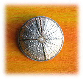 "brooch ""Movement"""