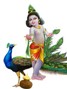 Srikrishna003[1158].png