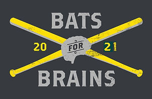 Bats for Brains 2021 (temporary).jpg