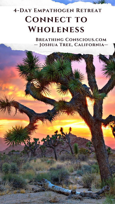 Empathogen Retreat Joshua Tree