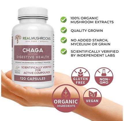 Chaga Mushroom | Digestive Health | Powder & Caps