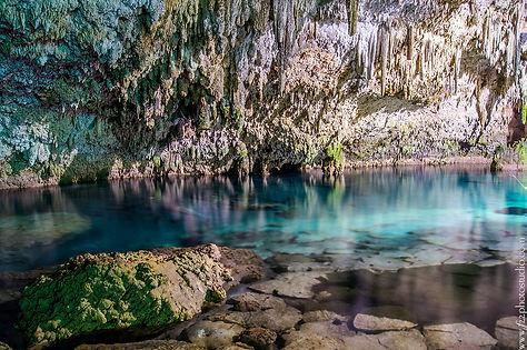 cenote choo-ha.jpg