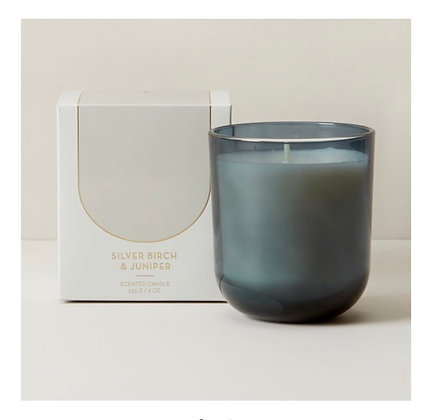 Silver Birch and Juniper | Poured Soy Candle Set