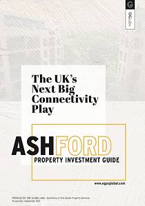 Ashford Investment Guide.png