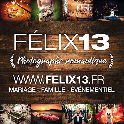 FELIX13-illus_edited.jpg