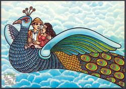 Pavão Postal Card